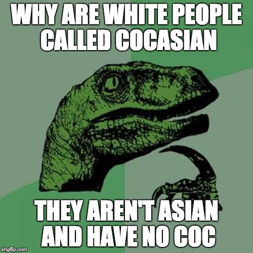 Philosoraptor | WHY ARE WHITE PEOPLE CALLED COCASIAN THEY AREN'T ASIAN AND HAVE NO COC | image tagged in memes,philosoraptor | made w/ Imgflip meme maker