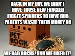 Fidget |  BACK IN MY DAY, WE DIDN'T HAVE THOSE NEW FANGLED FIDGET SPINNERS TO HAVE OUR PARENTS WASTE THEIR MONEY ON; WE HAD ROCKS! AND WE LIKED IT! | image tagged in fidget spinner,pet rock | made w/ Imgflip meme maker
