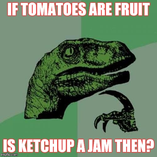 Philosoraptor Meme | IF TOMATOES ARE FRUIT IS KETCHUP A JAM THEN? | image tagged in memes,philosoraptor | made w/ Imgflip meme maker
