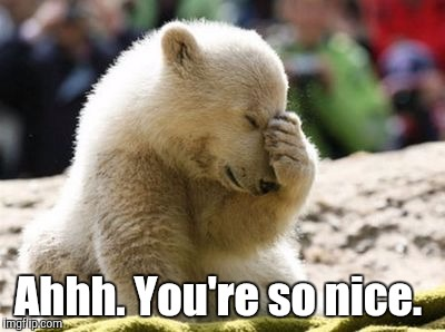 Cute Bear | Ahhh. You're so nice. | image tagged in cute bear | made w/ Imgflip meme maker