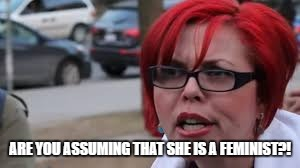 ARE YOU ASSUMING THAT SHE IS A FEMINIST?! | made w/ Imgflip meme maker