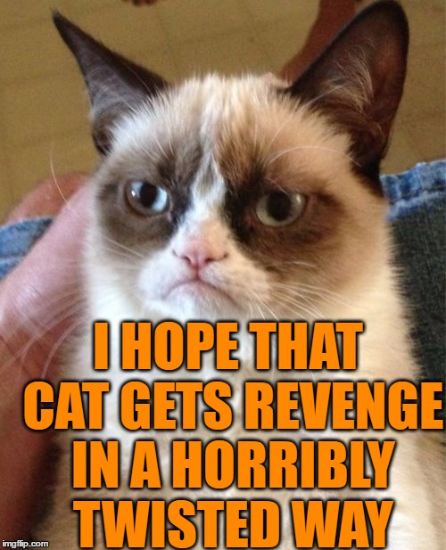 Grumpy Cat Meme | I HOPE THAT CAT GETS REVENGE IN A HORRIBLY TWISTED WAY | image tagged in memes,grumpy cat | made w/ Imgflip meme maker