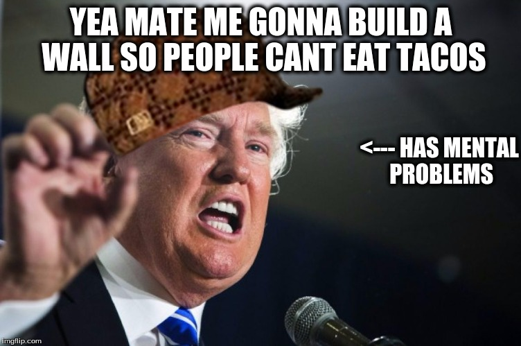 donald trump | YEA MATE ME GONNA BUILD A WALL SO PEOPLE CANT EAT TACOS <--- HAS MENTAL PROBLEMS | image tagged in donald trump,scumbag | made w/ Imgflip meme maker