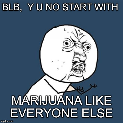 Y U No Meme | BLB,  Y U NO START WITH MARIJUANA LIKE EVERYONE ELSE | image tagged in memes,y u no | made w/ Imgflip meme maker