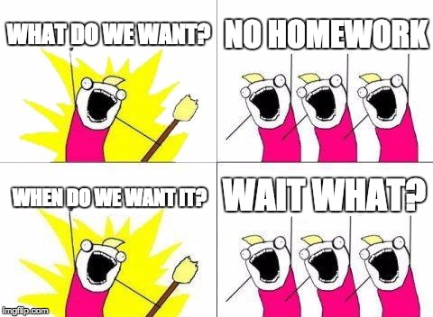 What Do We Want Meme | WHAT DO WE WANT? NO HOMEWORK WHEN DO WE WANT IT? WAIT WHAT? | image tagged in memes,what do we want | made w/ Imgflip meme maker