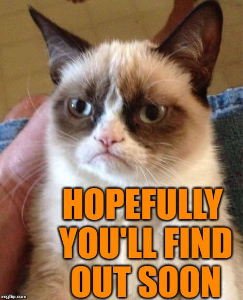 Grumpy Cat Meme | HOPEFULLY YOU'LL FIND OUT SOON | image tagged in memes,grumpy cat | made w/ Imgflip meme maker