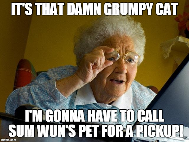 Grumpy Cat is headed for the wok! | IT'S THAT DAMN GRUMPY CAT I'M GONNA HAVE TO CALL SUM WUN'S PET FOR A PICKUP! | image tagged in memes,grandma finds the internet,grumpy cat,that wasn't chicken | made w/ Imgflip meme maker