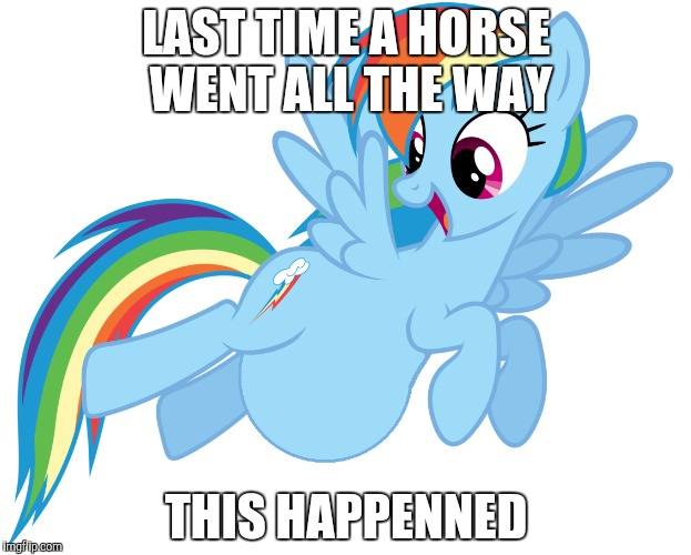 LAST TIME A HORSE WENT ALL THE WAY THIS HAPPENNED | made w/ Imgflip meme maker