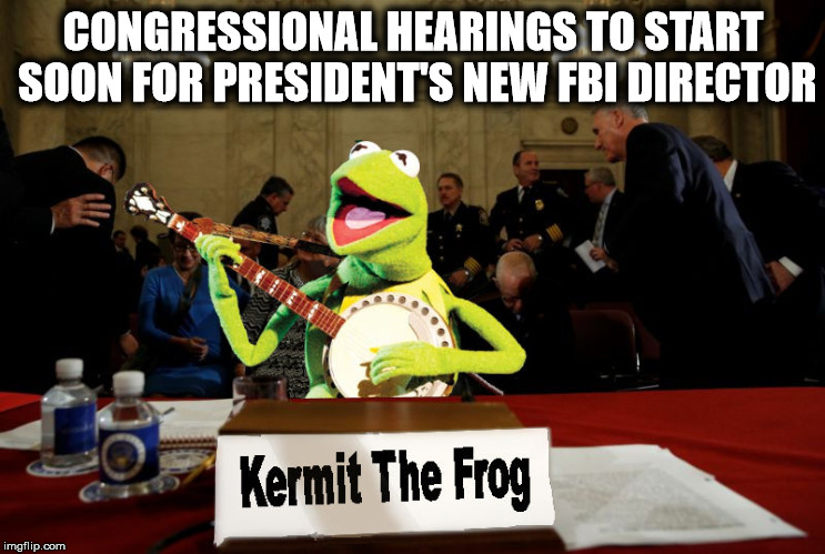 He sure won't put a puppet in the position. A MUPPET, maybe, but not a puppet |  CONGRESSIONAL HEARINGS TO START SOON FOR PRESIDENT'S NEW FBI DIRECTOR | image tagged in fbi director,congressional hearings,politics,appointment | made w/ Imgflip meme maker