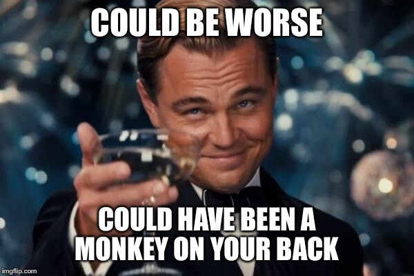 Leonardo Dicaprio Cheers Meme | COULD BE WORSE COULD HAVE BEEN A MONKEY ON YOUR BACK | image tagged in memes,leonardo dicaprio cheers | made w/ Imgflip meme maker