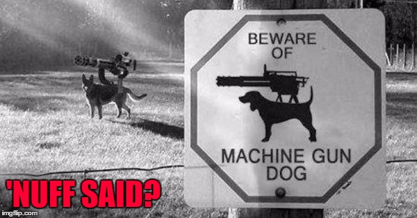 Now THAT'S a guard dog!!! | 'NUFF SAID? | image tagged in machine gun dog,memes,dogs,funny,animals,minigun | made w/ Imgflip meme maker