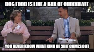 forrest gump box of chocolates | DOG FOOD IS LIKE A BOX OF CHOCOLATE YOU NEVER KNOW WHAT KIND OF SHIT COMES OUT | image tagged in forrest gump box of chocolates | made w/ Imgflip meme maker