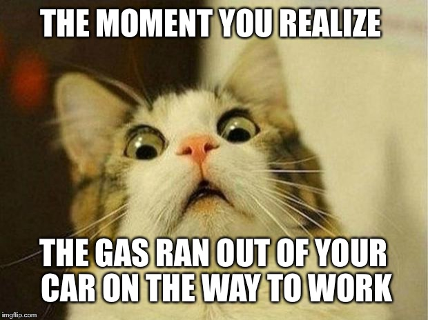 Scared Cat Meme | THE MOMENT YOU REALIZE THE GAS RAN OUT OF YOUR CAR ON THE WAY TO WORK | image tagged in memes,scared cat | made w/ Imgflip meme maker