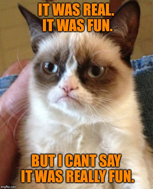Grumpy Cat Meme | IT WAS REAL. IT WAS FUN. BUT I CANT SAY IT WAS REALLY FUN. | image tagged in memes,grumpy cat | made w/ Imgflip meme maker