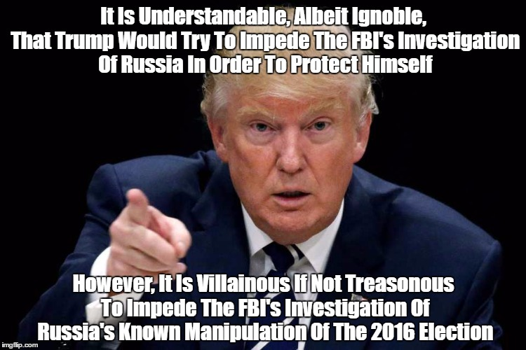It Is Understandable, Albeit Ignoble, That Trump Would Try To Impede The FBI's Investigation Of Russia In Order To Protect Himself However,  | made w/ Imgflip meme maker