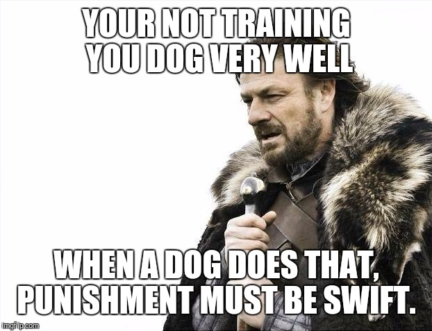 Brace Yourselves X is Coming Meme | YOUR NOT TRAINING YOU DOG VERY WELL WHEN A DOG DOES THAT, PUNISHMENT MUST BE SWIFT. | image tagged in memes,brace yourselves x is coming | made w/ Imgflip meme maker