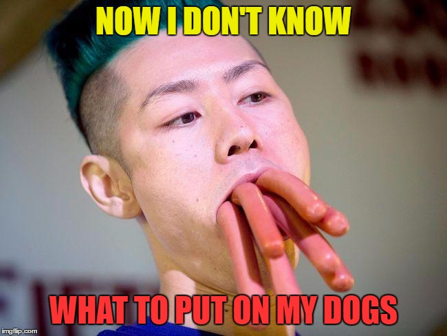 NOW I DON'T KNOW WHAT TO PUT ON MY DOGS | made w/ Imgflip meme maker