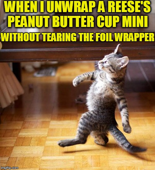 WHEN I UNWRAP A REESE'S PEANUT BUTTER CUP MINI WITHOUT TEARING THE FOIL WRAPPER | made w/ Imgflip meme maker
