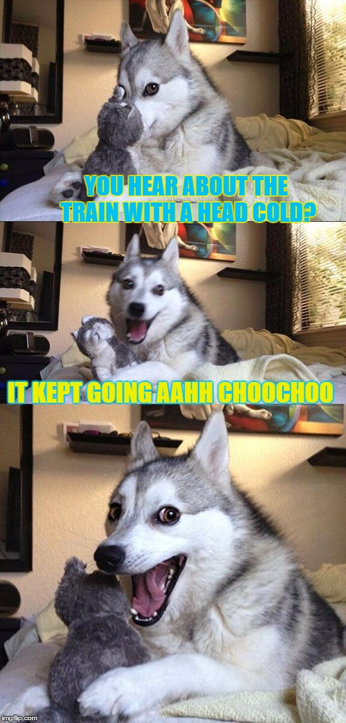 Train week - bad pun -  (A MyrianWaffleEV event) | YOU HEAR ABOUT THE TRAIN WITH A HEAD COLD? IT KEPT GOING AAHH CHOOCHOO | image tagged in memes,bad pun dog,train week,myrianwaffleev,sneezing | made w/ Imgflip meme maker