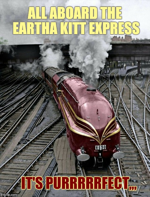 Straight out of the bat cave,,, | ALL ABOARD THE EARTHA KITT EXPRESS IT'S PURRRRRFECT,,, | image tagged in train week,a myrianwaffleev event,eartha kitt,purrrrrs,cat woman | made w/ Imgflip meme maker