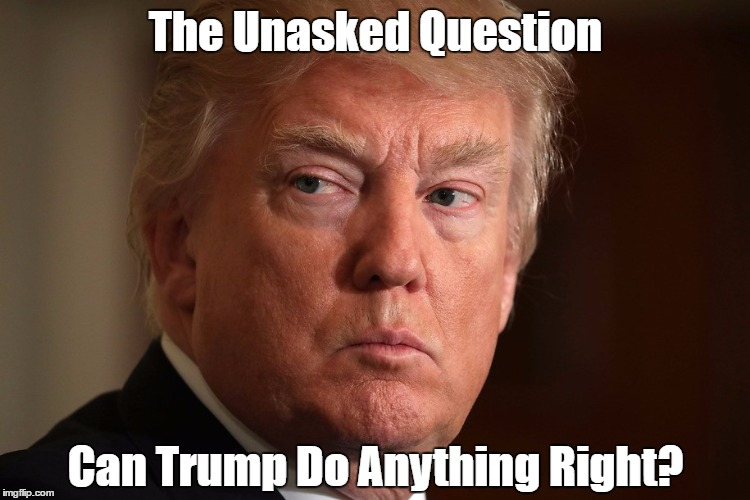 The Unasked Question Can Trump Do Anything Right? | made w/ Imgflip meme maker