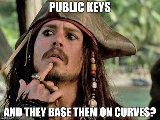 Explain it to a Pirate | PUBLIC KEYS AND THEY BASE THEM ON CURVES? | image tagged in jack sparrow,memes,funny,cryptography,key | made w/ Imgflip meme maker