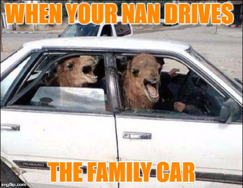Don't let your nan drive | WHEN YOUR NAN DRIVES THE FAMILY CAR | image tagged in memes,quit hatin | made w/ Imgflip meme maker