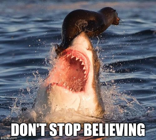 Travelonshark Meme | DON'T STOP BELIEVING | image tagged in memes,travelonshark | made w/ Imgflip meme maker