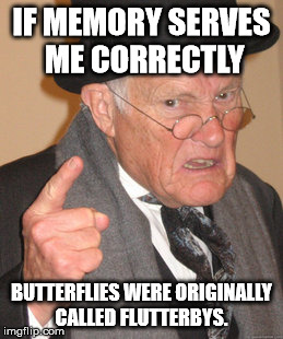 Back In My Day Meme | IF MEMORY SERVES ME CORRECTLY BUTTERFLIES WERE ORIGINALLY CALLED FLUTTERBYS. | image tagged in memes,back in my day | made w/ Imgflip meme maker