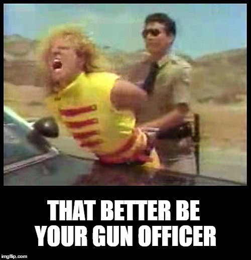 I Can't Drive 55 | THAT BETTER BE YOUR GUN OFFICER | image tagged in sammy hagar,totally busted,busted | made w/ Imgflip meme maker