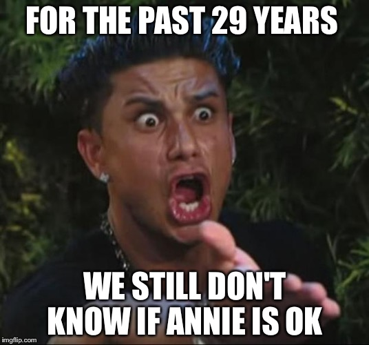 DJ Pauly D Meme | FOR THE PAST 29 YEARS WE STILL DON'T KNOW IF ANNIE IS OK | image tagged in memes,dj pauly d | made w/ Imgflip meme maker