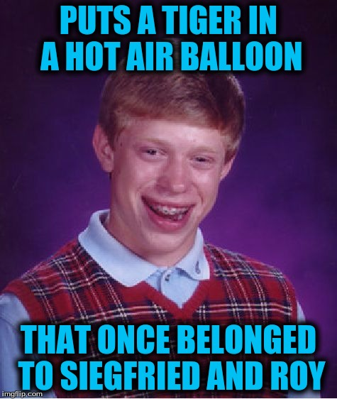 Bad Luck Brian Meme | PUTS A TIGER IN A HOT AIR BALLOON THAT ONCE BELONGED TO SIEGFRIED AND ROY | image tagged in memes,bad luck brian | made w/ Imgflip meme maker
