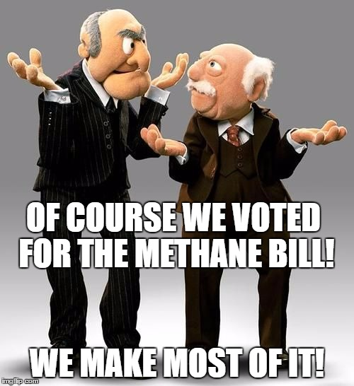 Statler & Waldof AKA Graham & McCain | OF COURSE WE VOTED FOR THE METHANE BILL! WE MAKE MOST OF IT! | image tagged in idiots,methane,old fart | made w/ Imgflip meme maker