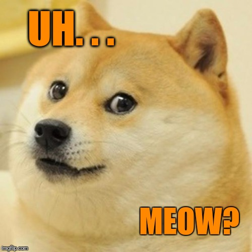 Doge Meme | UH. . . MEOW? | image tagged in memes,doge | made w/ Imgflip meme maker