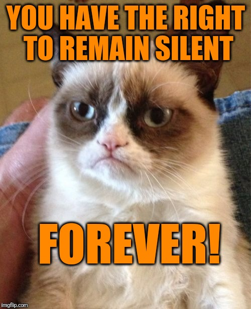 Grumpy Cat Meme | YOU HAVE THE RIGHT TO REMAIN SILENT FOREVER! | image tagged in memes,grumpy cat | made w/ Imgflip meme maker
