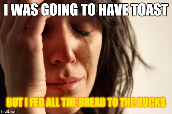 First World Problems | I WAS GOING TO HAVE TOAST BUT I FED ALL THE BREAD TO THE DUCKS | image tagged in memes,first world problems,stupid people be like,lol so funny,poor animals,vegan logic | made w/ Imgflip meme maker