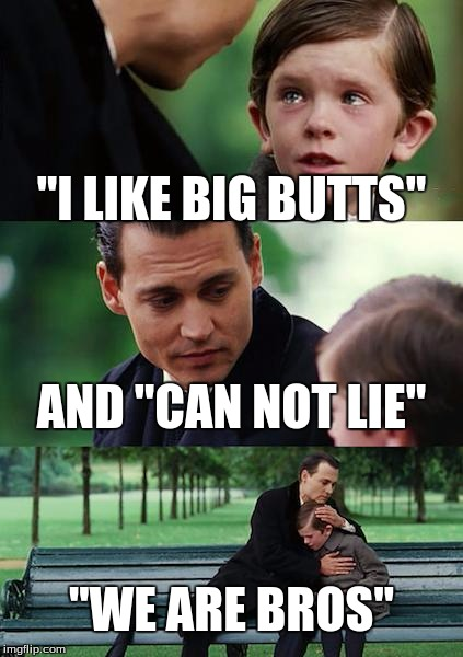 i like big butts and i cant not lie