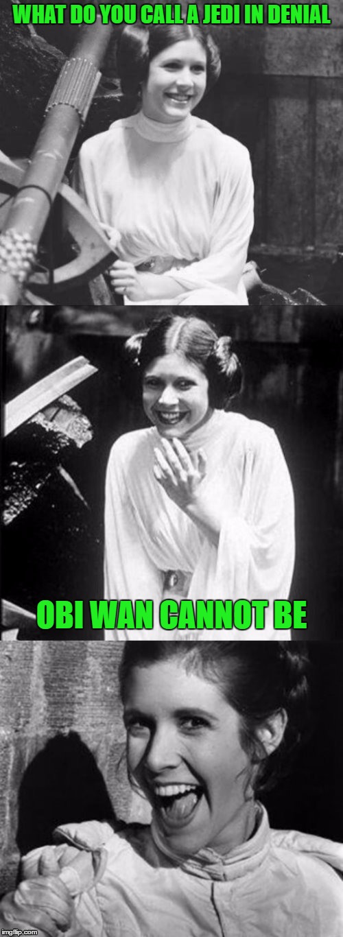 Princess Leia Puns | WHAT DO YOU CALL A JEDI IN DENIAL OBI WAN CANNOT BE | image tagged in princess leia puns | made w/ Imgflip meme maker