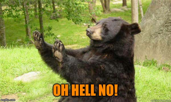 No Bear Blank | OH HELL NO! | image tagged in no bear blank | made w/ Imgflip meme maker