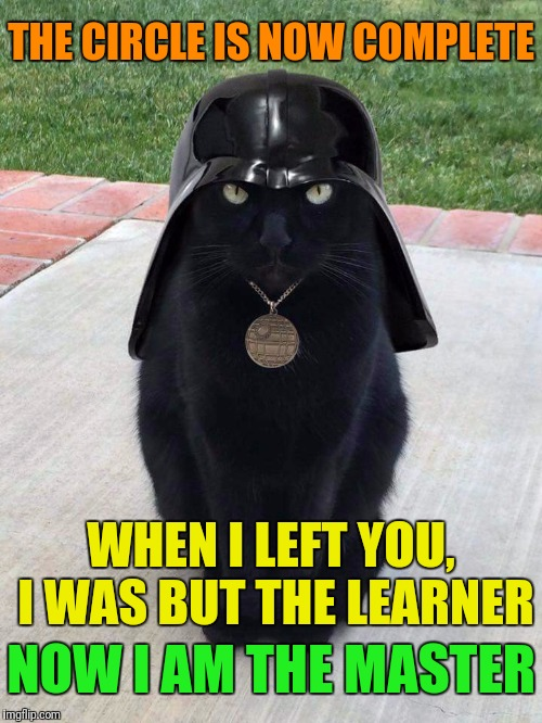 Ca-rth Vader ≥^.^≤ | THE CIRCLE IS NOW COMPLETE NOW I AM THE MASTER WHEN I LEFT YOU, I WAS BUT THE LEARNER | image tagged in memes,star wars week,google images,darth vader,star wars,craziness_all_the_way | made w/ Imgflip meme maker