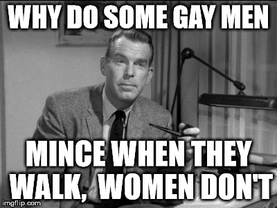WHY DO SOME GAY MEN MINCE WHEN THEY WALK,  WOMEN DON'T | made w/ Imgflip meme maker