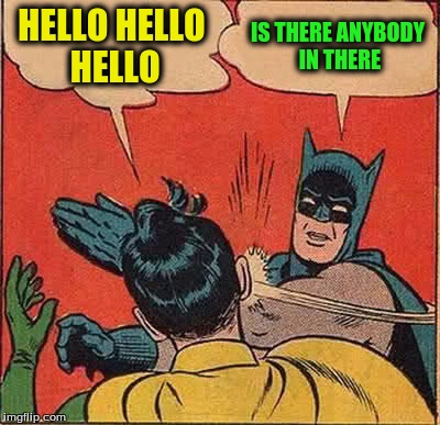 Batman Slapping Robin Meme | HELLO HELLO HELLO IS THERE ANYBODY IN THERE | image tagged in memes,batman slapping robin | made w/ Imgflip meme maker