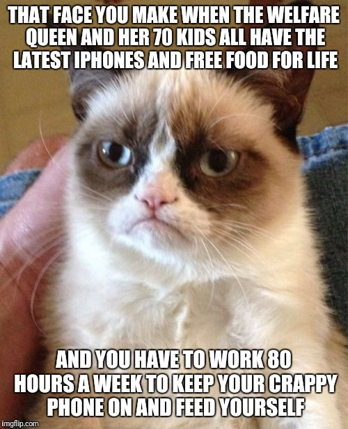Grumpy Cat | THAT FACE YOU MAKE WHEN THE WELFARE QUEEN AND HER 70 KIDS ALL HAVE THE LATEST IPHONES AND FREE FOOD FOR LIFE AND YOU HAVE TO WORK 80 HOURS A | image tagged in memes,grumpy cat,food stamps,welfare queen,obama phone | made w/ Imgflip meme maker
