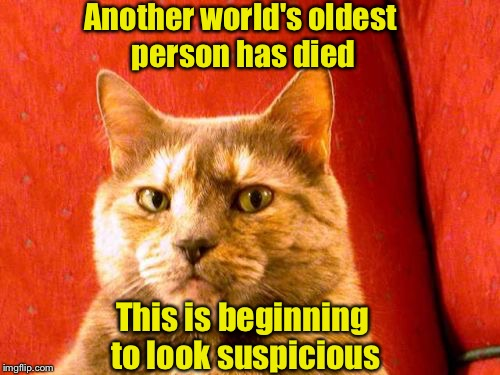 Suspicious Cat Meme | Another world's oldest person has died This is beginning to look suspicious | image tagged in memes,suspicious cat | made w/ Imgflip meme maker