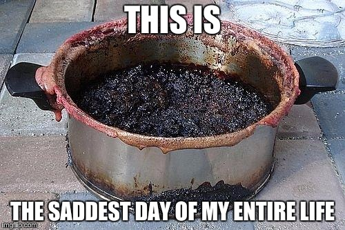 THIS IS THE SADDEST DAY OF MY ENTIRE LIFE | image tagged in burned food | made w/ Imgflip meme maker
