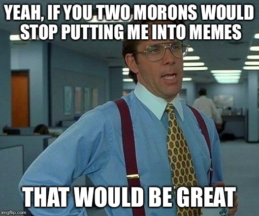 That Would Be Great Meme | YEAH, IF YOU TWO MORONS WOULD STOP PUTTING ME INTO MEMES THAT WOULD BE GREAT | image tagged in memes,that would be great | made w/ Imgflip meme maker