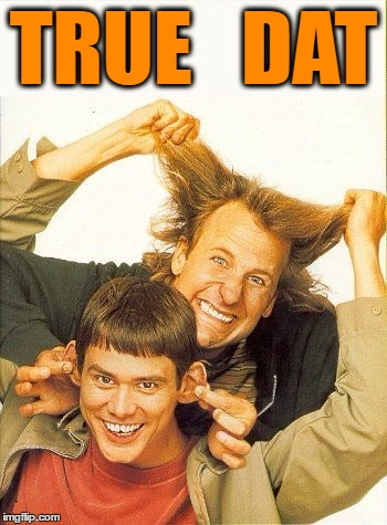 DUMB and dumber | TRUE   DAT | image tagged in dumb and dumber | made w/ Imgflip meme maker