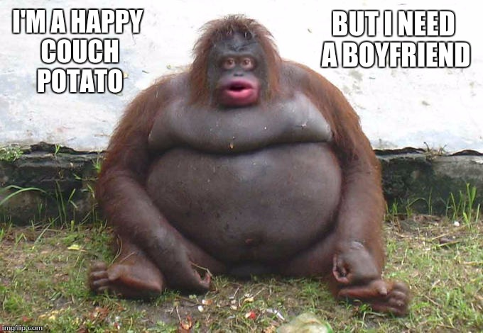 FatMonkey | I'M A HAPPY COUCH POTATO BUT I NEED A BOYFRIEND | image tagged in fatmonkey | made w/ Imgflip meme maker