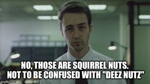 "Copy of a copy  | NO, THOSE ARE SQUIRREL NUTS. NOT TO BE CONFUSED WITH ""DEEZ NUTZ"" 