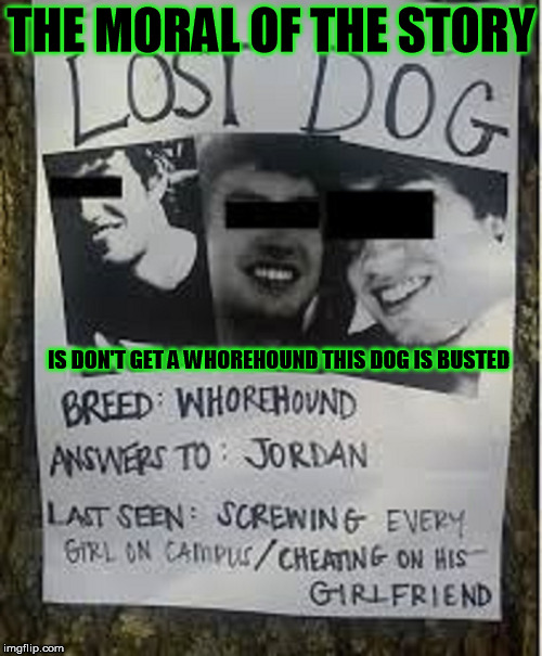 Have You Seen My Dog | THE MORAL OF THE STORY IS DON'T GET A W**REHOUND THIS DOG IS BUSTED | image tagged in lost dog,male whores,manwhore,the most interesting dog in the world | made w/ Imgflip meme maker